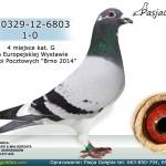 PL-0329-12-6803