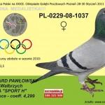 PL-0229-08-1037