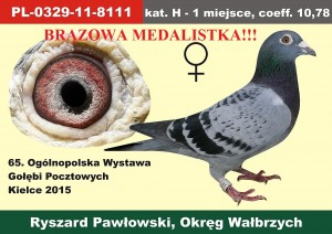 PL-0329-11-8111OLIMP