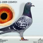 BELG-2009-2204931