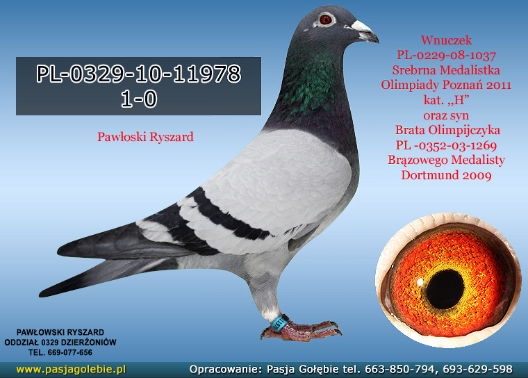 PL-0329-10-11978