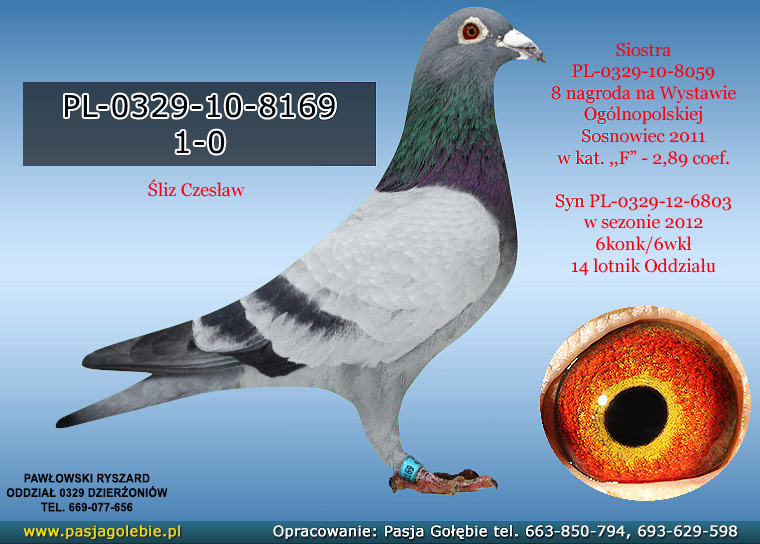 PL-0329-10-8169