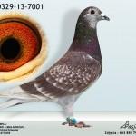 PL-0329-13-7001