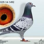 PL-0329-14-1492