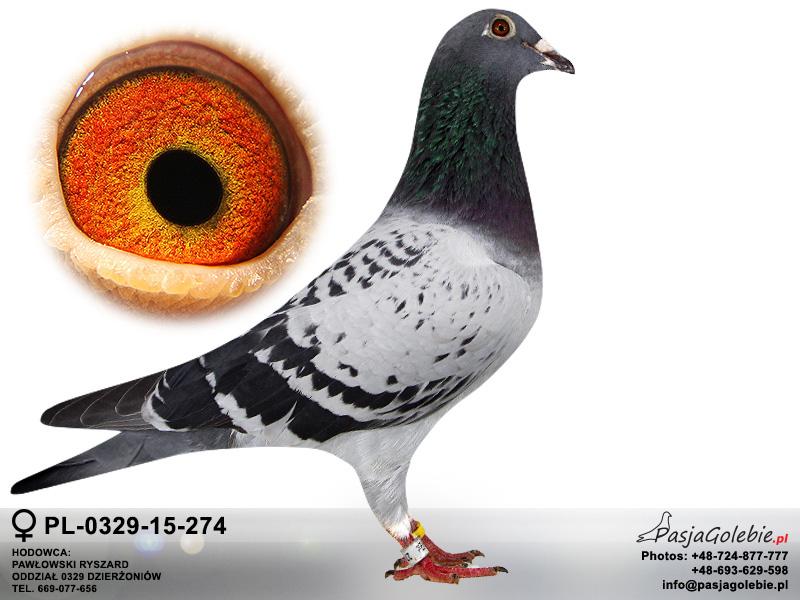 PL-0329-15-274