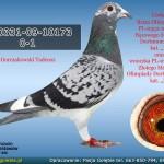 PL-0331-09-10173