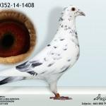 PL-0352-14-1408