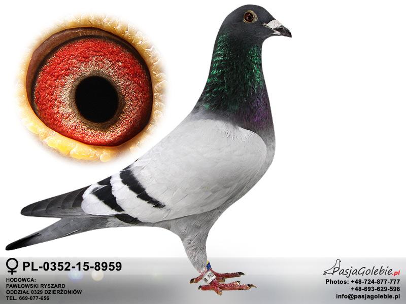 PL-0352-15-8959