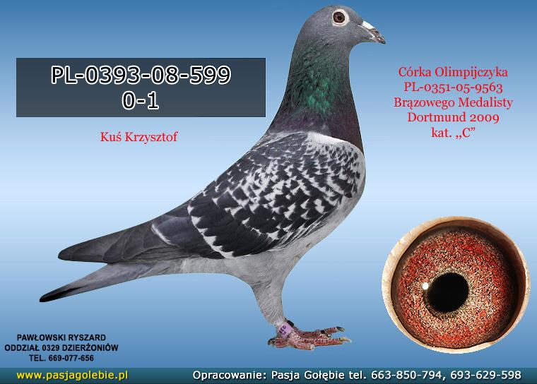 PL-0393-08-599
