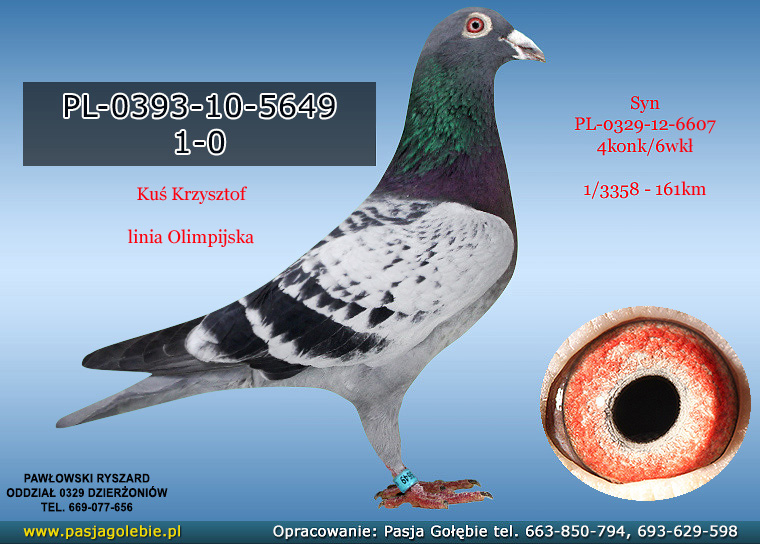 PL-0393-10-5649