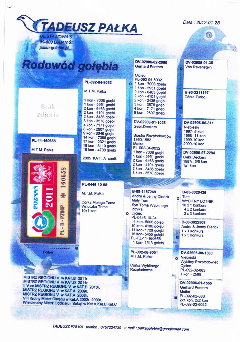 RODOWOD PARY NR 24 1